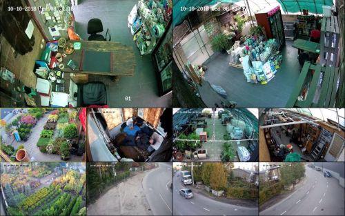 Видеонаблюдение и локальная сеть в магазине по продаже растений